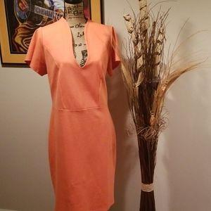 NWOT Ashley Stewart pencil dress